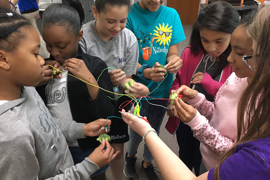 Read Article: How Four Students Promote Gender Equity and Diversity in STEM